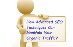 SEO Techniques Can Manifold Your Organic Traffic